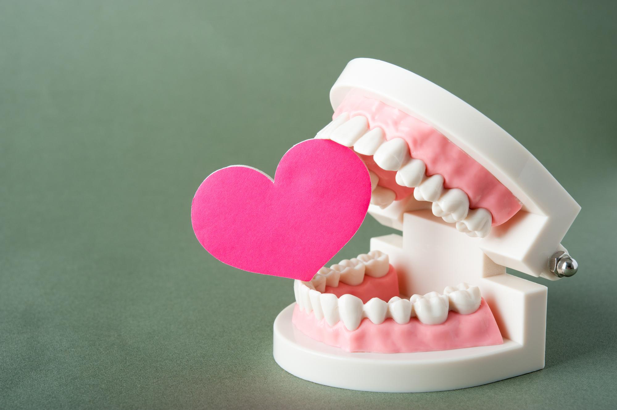 入れ歯 安定