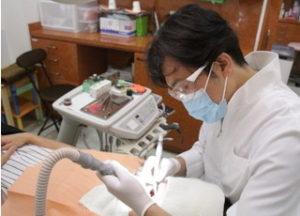 ララガーデン川口歯科クリニックの写真